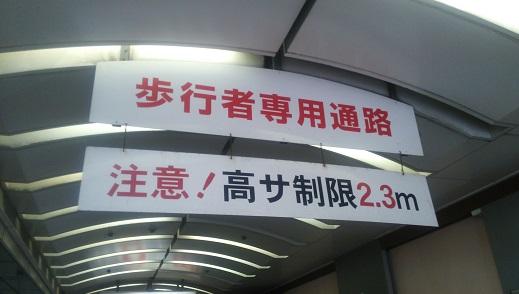 DSC_2508.JPG